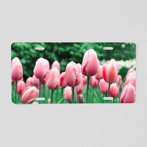 Spring Tulips Aluminum License Plate
