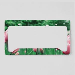 Spring Tulips License Plate Holder