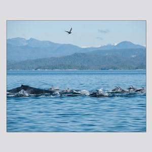 Small Poster-Humpback And Dolphins