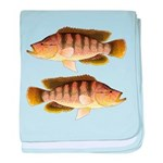 Thinface Cichlid baby blanket