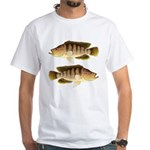Thinface Cichlid T-Shirt