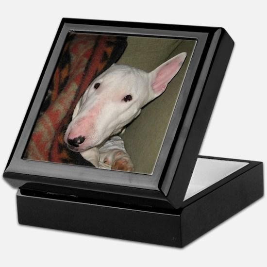 Unique Bull terrier Keepsake Box