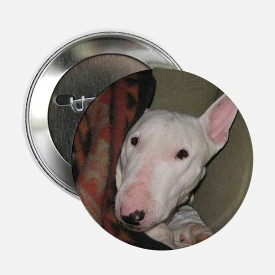 """Cute Bull terrier 2.25"""" Button"""