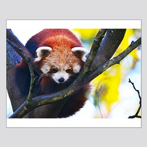 Red Panda Perched Poster Design