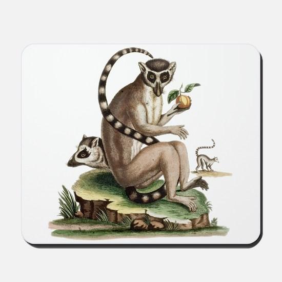 Lemur Artwork Mousepad