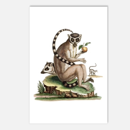 Lemur Artwork Postcards (Package of 8)