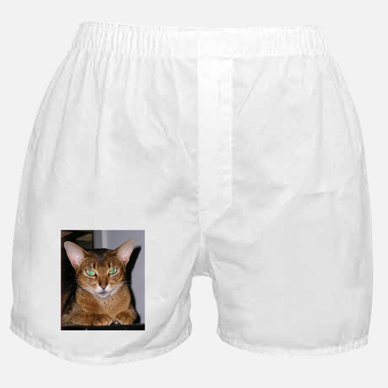 Abyssinian Boxer Shorts