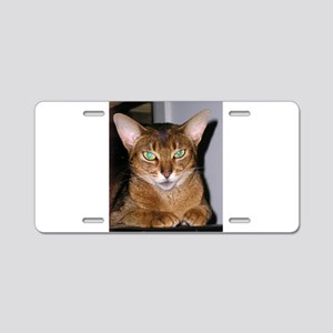 Abyssinian Aluminum License Plate