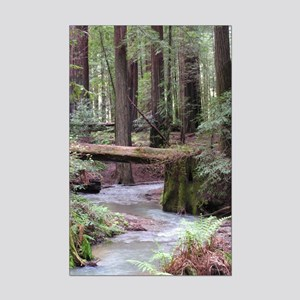 Forest Stream Mini Poster Print