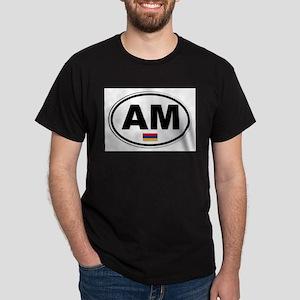Armenia AM Plate T-Shirt