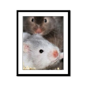 How much is that hamster in the window Framed Pane
