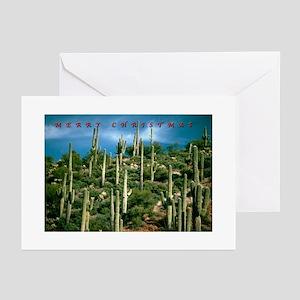 Many Saquaros Holiday Greeting Cards