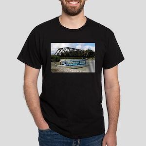 Tour boat, Talkeetna, Alaska T-Shirt