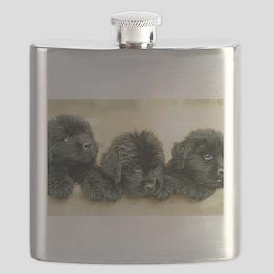 IMG_2696 Flask