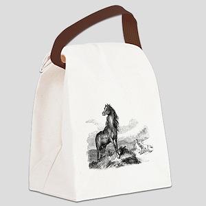 Vintage Horse Illustration - 1800 Canvas Lunch Bag