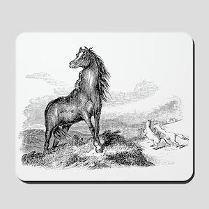 Vintage Horse Illustration - 1800s Horse Mousepad