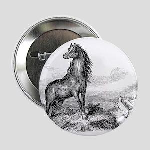 "Vintage Horse Illustration - 1800s Ho 2.25"" Button"