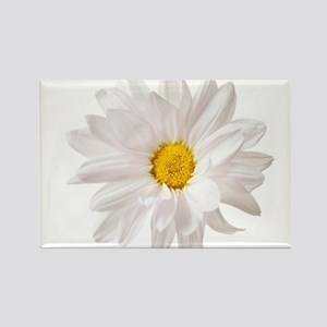 Daisy Flower White Yellow Daisies Floral F Magnets