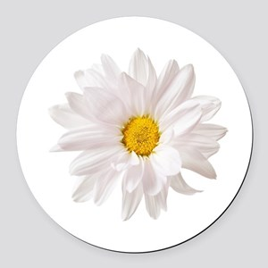 Daisy Flower White Yellow Daisies Round Car Magnet