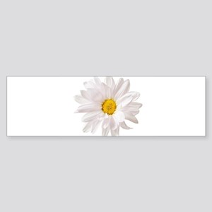 Daisy Flower White Yellow Daisies F Bumper Sticker