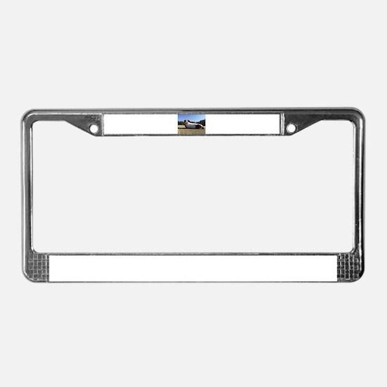 Track Dog 3 License Plate Frame