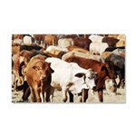 A Herd of Cattle Car Magnet 20 x 12