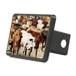 A Herd of Cattle Rectangular Hitch Cover