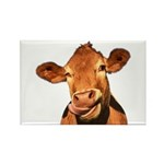 Selfie Cow (Transparent Rectangle Magnet (10 pack)