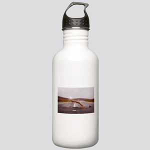 Swimming Down the Stre Stainless Water Bottle 1.0L