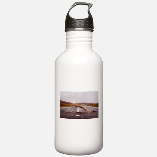 Swimming Down the Stre Sports Water Bottle