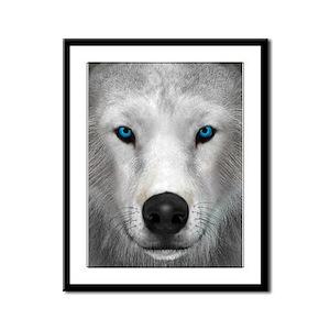 Arctic Wolf Framed Panel Print