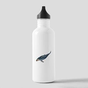 DIVE Water Bottle