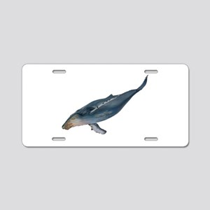 DIVE Aluminum License Plate