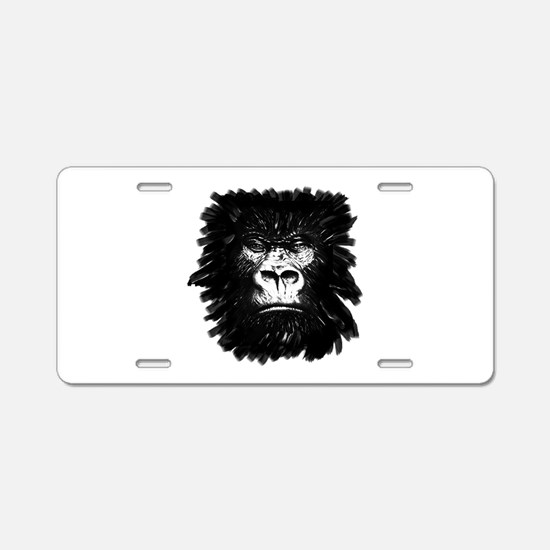 STARE Aluminum License Plate