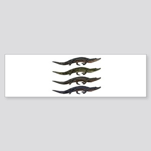SPECIES Bumper Sticker