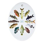 African Fishes Clock I Oval Ornament