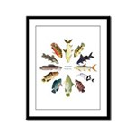 African Fishes Clock I Framed Panel Print
