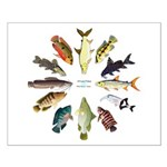 African Fishes Clock I Posters