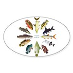 African Fishes Clock I Sticker