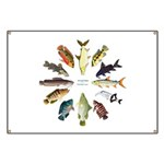 African Fishes Clock I Banner