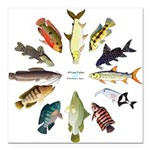 African Fishes Clock I Square Car Magnet 3