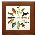 African Fishes Clock I Framed Tile