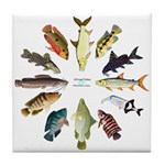 African Fishes Clock I Tile Coaster