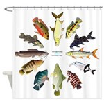 African Fishes Clock I Shower Curtain