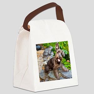 Adorable Liver Color Schnauzer Canvas Lunch Bag