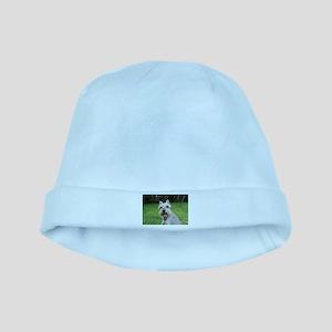 Precious Mini Schnauzer on Grass baby hat