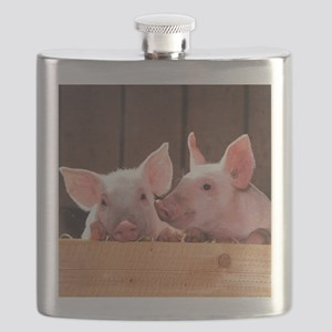 Two Adorable Little Pigs Flask