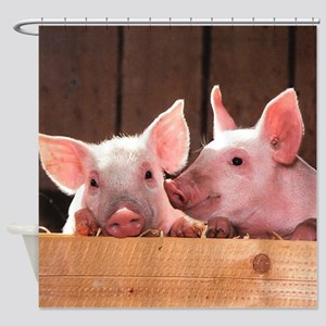 Two Adorable Little Pigs Shower Curtain