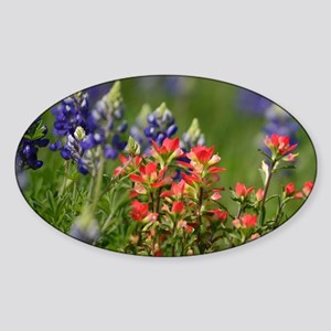 Bluebonnets and Paintbrushes Sticker