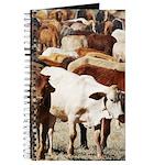 A Herd of Cattle Journal
